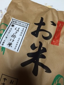 米 青ノ木農緑