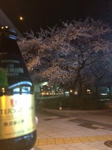 ビールと桜