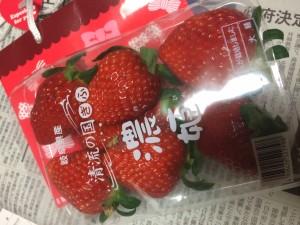 イチゴ濃姫