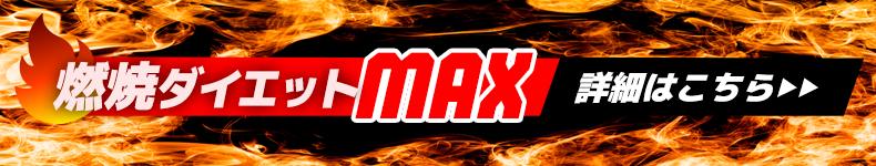 燃焼ダイエットMAXはこちら