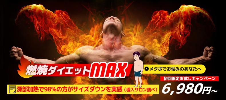 燃焼ダイエットMAX